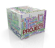 3d cube word tags wordcloud of project management. 3d rendering of cube box of wordcloud word tags of project management Royalty Free Stock Photos