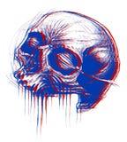 3d czaszka royalty ilustracja