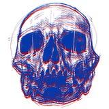 3d czaszka Zdjęcie Royalty Free