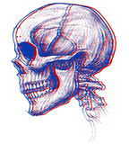 3d czaszka Fotografia Stock