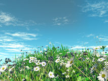 3D daisies in grass Royalty Free Stock Photo