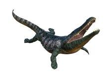 3D, das Archegosaurus auf Weiß überträgt Stockfoto