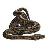 3D, das birmanische Pythonschlange auf Weiß überträgt lizenzfreie abbildung