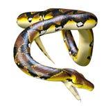 3D, das retikulierte Pythonschlange auf Weiß überträgt lizenzfreie abbildung