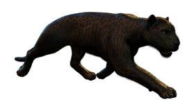 3D, das schwarzen Panther auf Weiß überträgt lizenzfreie abbildung