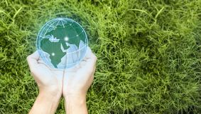 D?a de la Tierra en las manos de los ?rboles que crecen alm?cigos El concepto de ahorro del mundo y de la innovación, muchacha qu fotos de archivo