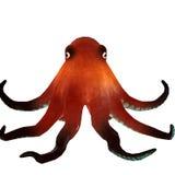3d de octopus geeft terug Stock Fotografie