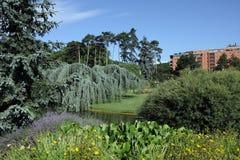 d'Or de Parc de la Tete Imagen de archivo