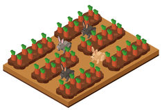 3D design for carrot garden with rabbits. Illustration Stock Image
