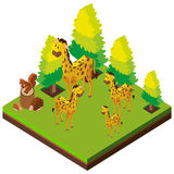 3D design for giraffes in the zoo. Illustration Stock Photos