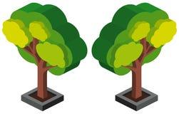 3D design for green tree. Illustration Stock Image