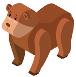 3D design for grizzly bear Stock Images