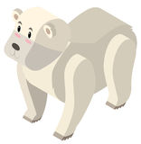 3D design for polar bear Stock Image