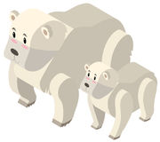 3D design for polar bears Stock Photography