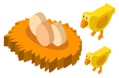 3D design for two chicks and eggs Stock Photography