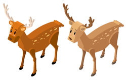 3D design for two deers Stock Photography