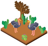 3D design for two ostriches in desert Stock Photography
