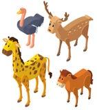 3D design for wild animals. Illustration Royalty Free Stock Photo