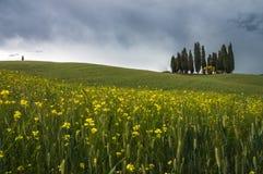 D& x27 di Val; Paesaggio di Orcia Fotografia Stock