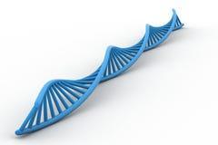 3d DNA-bundel Stock Afbeeldingen