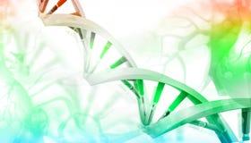 3D DNA-bundels Royalty-vrije Illustratie