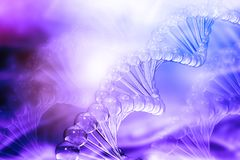 3D DNA-bundels Vector Illustratie