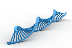 3d DNA strand Royalty Free Stock Photo