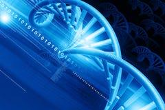 3d DNA-structuur Stock Fotografie