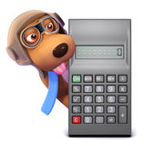 3d Dog has a calculator Royalty Free Stock Photography