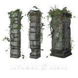 Vides que crecen en columnas viejas stock de ilustración