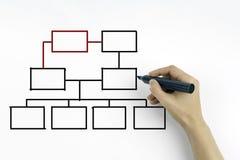 Dé el dibujo de una carta de organización en un tablero blanco Imagen de archivo libre de regalías