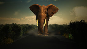 3D elephant walking towards camera Stock Photography