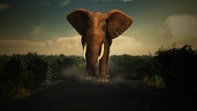 3D elephant walking towards camera Stock Photography