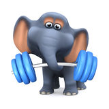3d Elephant weightlifter Royalty Free Stock Photo