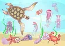 ` d'espèce marine de ` pour votre créativité illustration stock