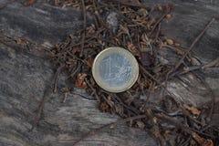 3 d 1 euro przedmiot odizolowane zdjęcie stock
