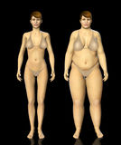 3d fat and thin woman before and after concept Royalty Free Stock Photography