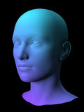 3D female mode. Colorful 3D female face model on black background Stock Images