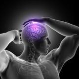 3D figura maschio testa della tenuta con il cervello evidenziato Immagine Stock