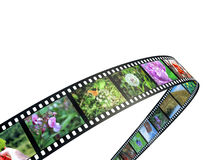 3D film strip with nice pictures.  Stock Photos
