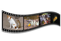 3D FILM STRIP. WITH NICE PICTURES Royalty Free Stock Image