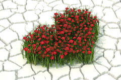 3d fiorisce il cuore sul fondo bianco del deserto Fotografie Stock Libere da Diritti