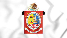 3D Flag of Oaxaca State, Mexico. Stock Image