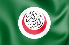 3D Flag of Organisation of Islamic Cooperation. 3D Illustration vector illustration