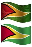 Guyana 3D country flag, two styles royalty free illustration