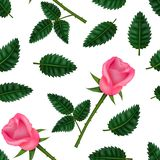 3d fleur détaillée réaliste Rose Seamless Pattern Background Vecteur illustration libre de droits