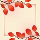 3D floral frame template Royalty Free Stock Photo
