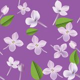 3d floral seamless pattern background. Texture with Purple Lilac flowers, leaf and petals vector illustration. 3d floral seamless pattern background. Texture vector illustration
