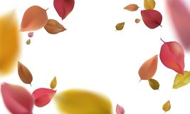3d flying autumn leaves. Red yellow wind blurred leaf isolated on white background vector illustration. Art vector illustration
