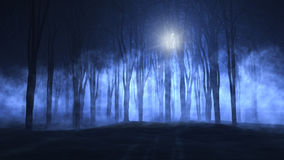 3D foggy spooky forest Royalty Free Stock Photos